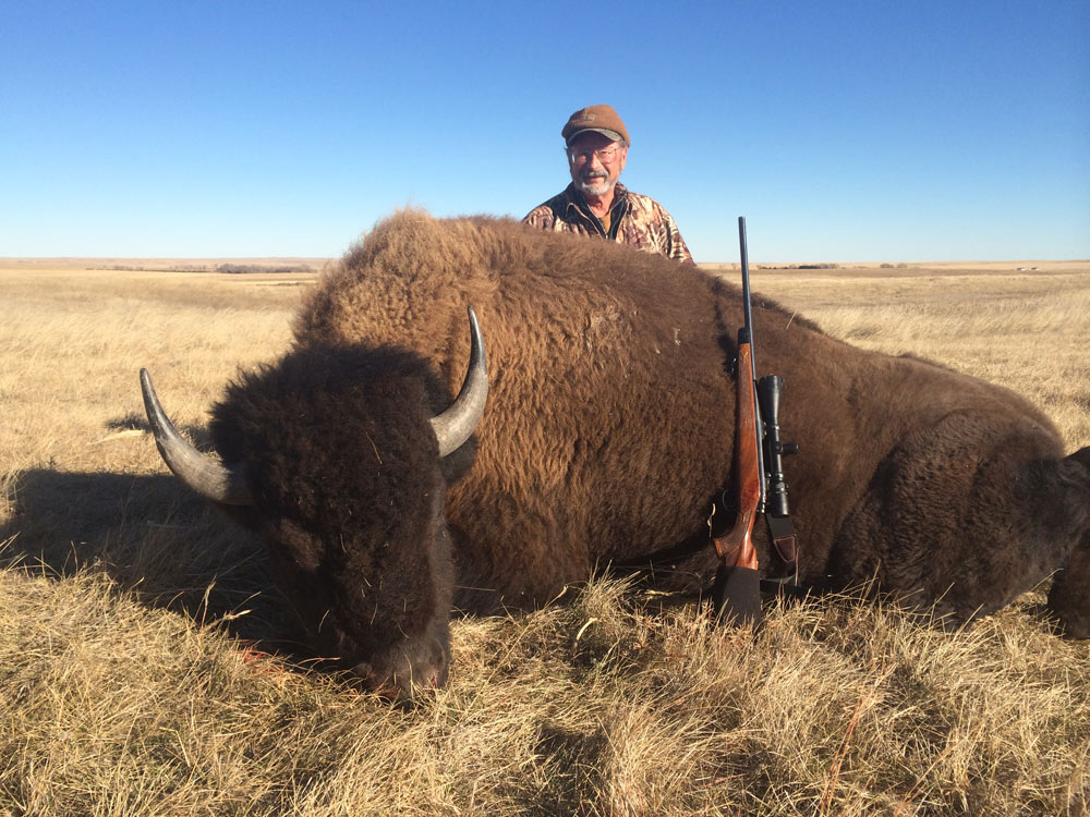 North amp south dakota buffalo hunting trips and elk hunting trips